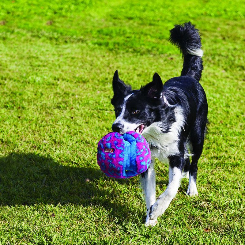 Brinquedo Interativo para cães Funzler Kong