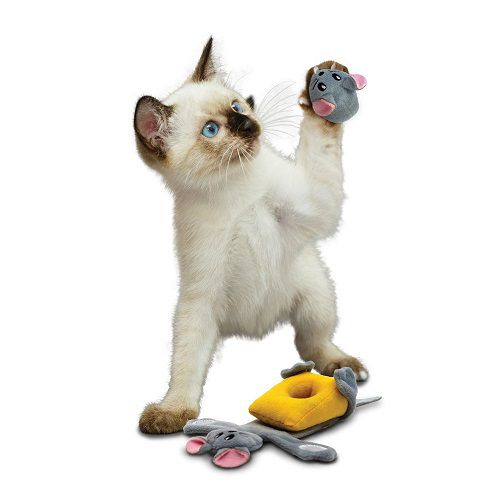 Brinquedo com catnip  Pull A Partz Cheezy KONG para gatos
