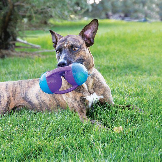 Brinquedo Jumbler Tri KONG com apito para cães