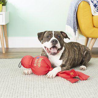 Brinquedo para cães interativo Wubba Mega Kong