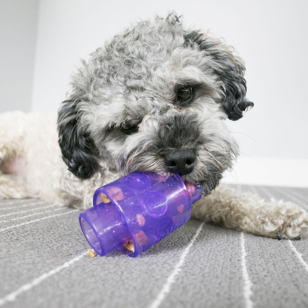 Brinquedo Recheável KONG Treat Duo para cães