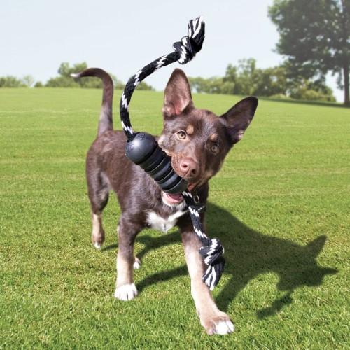 Brinquedo Resistente Extreme Dental Com corda KONG cães