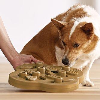 Brinquedo Tabuleiro Dog Hide n'Slide Nina Ottosson para cães e gatos Nível Intermediário