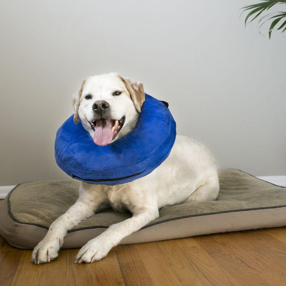 Colar Elizabetano inflável  KONG E Cloud Collar para cães e gatos