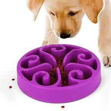 Comedouro Lento interativo para cães Fun Feeder- Roxo
