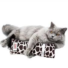 Kit para gatos Magic Tower + Brinquedo Kongcom  Catnip Kickeroo Pattern