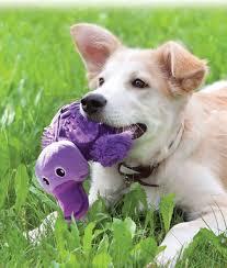 Brinquedo para cães Pelúcia Shells Urso e Ornittorrinco KONG
