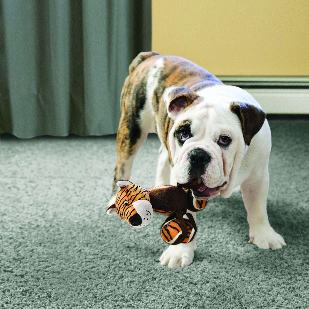 Brinquedo para cães Pelúcia Tennishoes KONG