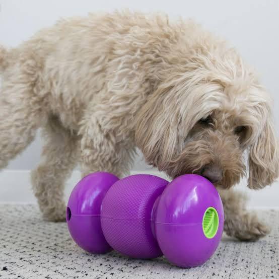 Brinquedo para cães Interativo dispenser recheável Replay KONG