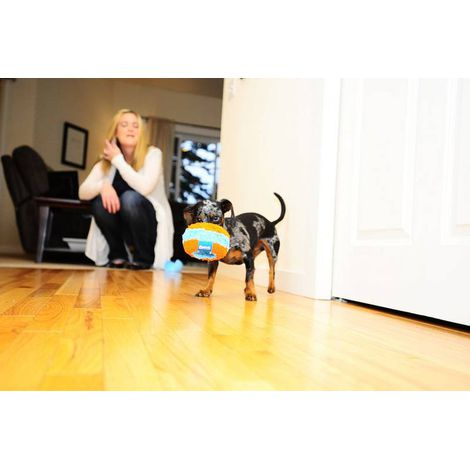 Brinquedo para cães bola Disco Indoor Chuck It