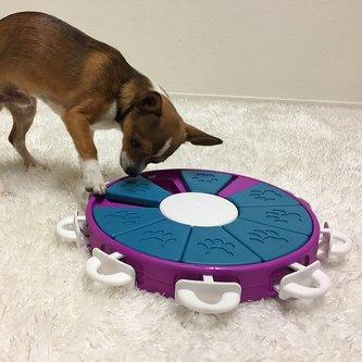 Tabuleiro Dog Twister Nina Ottosson para cães e gatos Nível Avançado
