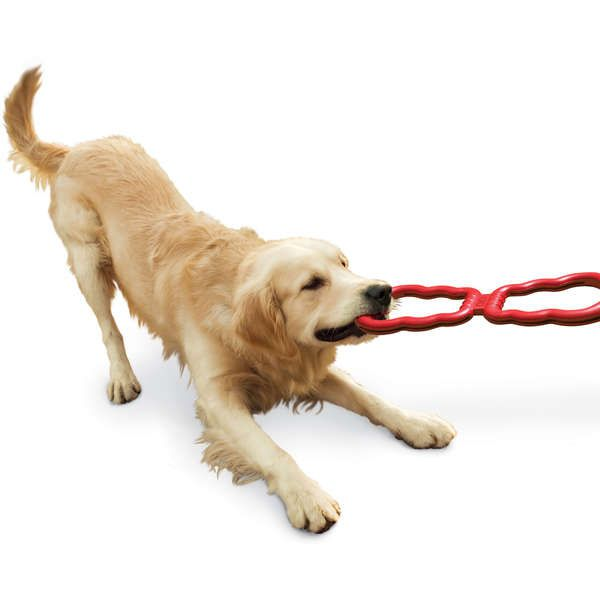 Brinquedo Interativo Tug Toy Kong cabo de guerra para cães