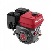 Motor a Gasolina B4T 15.0 CV Branco