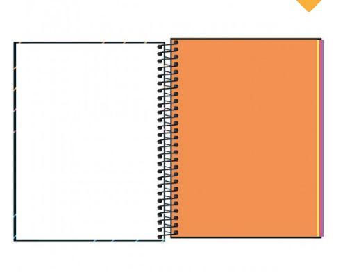 Caderno Neon Kori Colegial sem Pauta  80 Folhas 4CORES