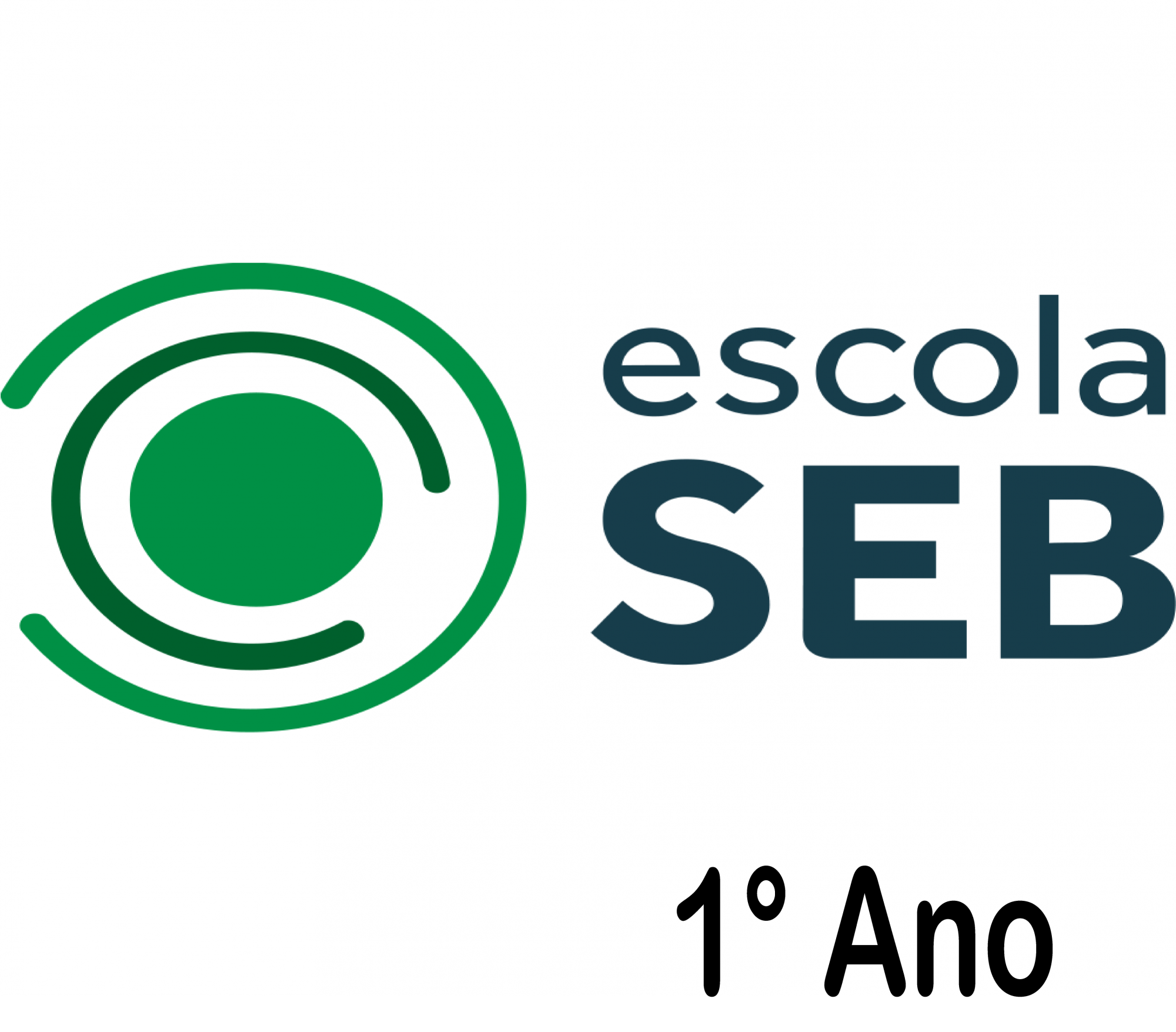 Seb Coc - 1° Ano sem uso pessoal - 2021