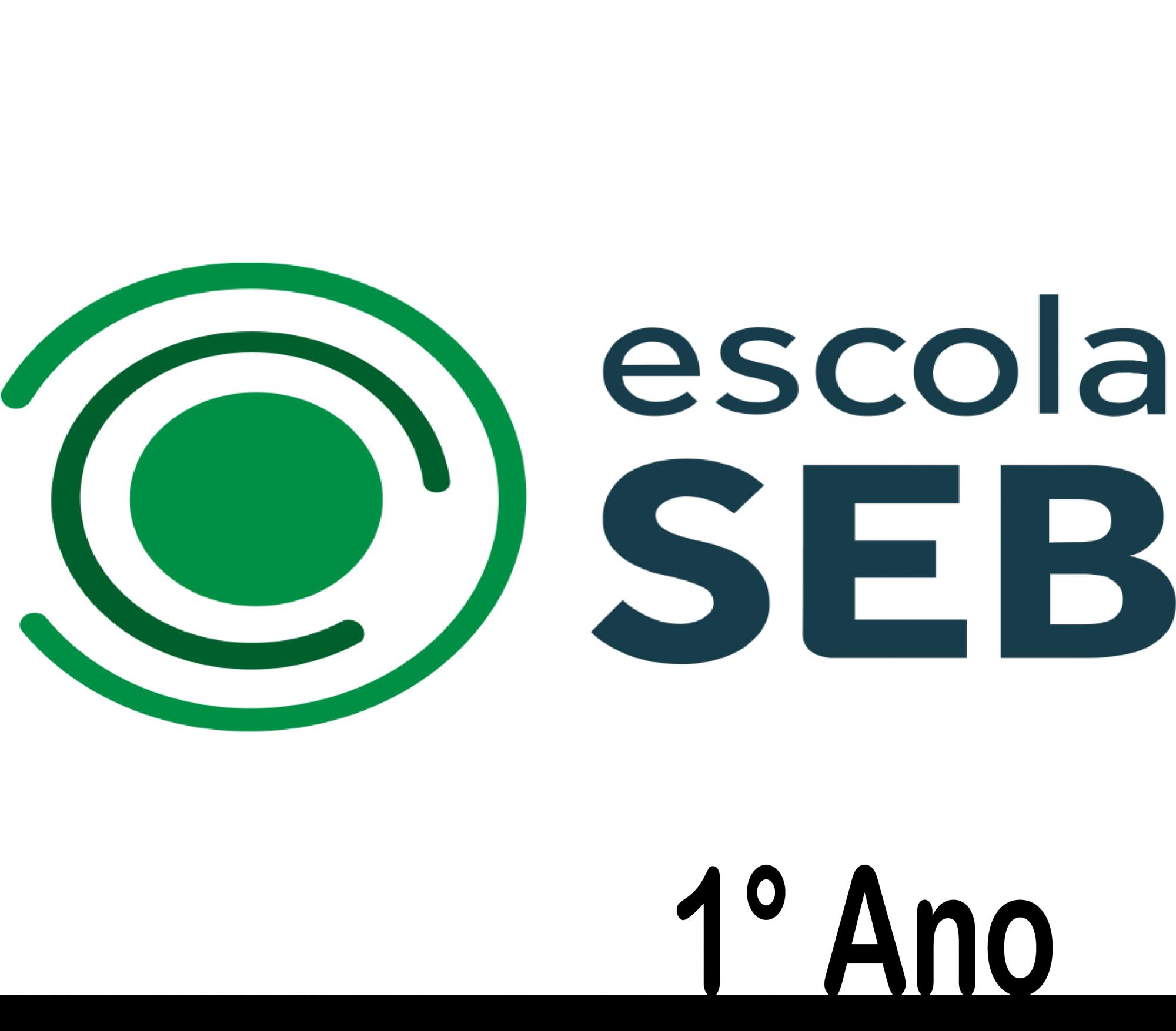 Seb Coc - 1° Ano uso pessoal Faber-Castell - 2021