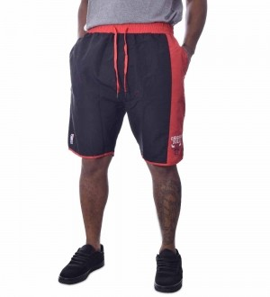 Bermuda NBA Chicago Bulls