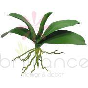 Folha Artificial De Orquídea Toque Real com 32Cm - Brilliance