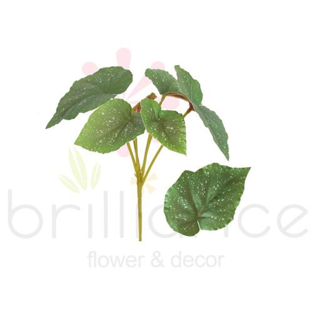 Buque De Begonia Verde com 6 galhos - Brilliance