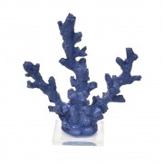 Coral Fino Azul Marinho