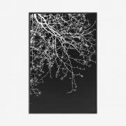 Quadro Black and White 83x123cm