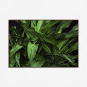 Quadro Green Details 142x97cm