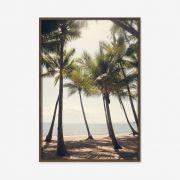 Quadro Palm Covel 47x67cm