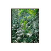 Quadro Save the Atlantic Forest 123x153cm