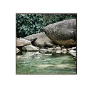 Quadro Save the Atlantic Forest 153x153cm