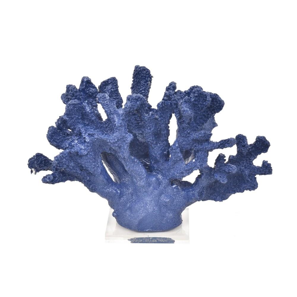 Coral Largo Azul marinho