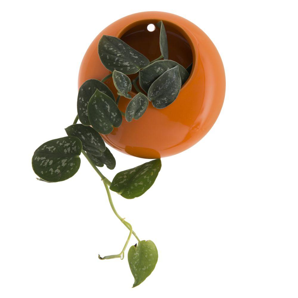 Floreira para Parede Mii Laranja - 8 x 20cm