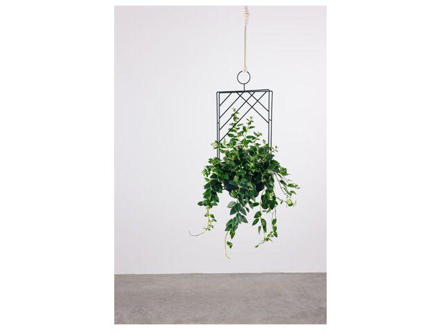 Guilanda Retangular-Suporte para plantas