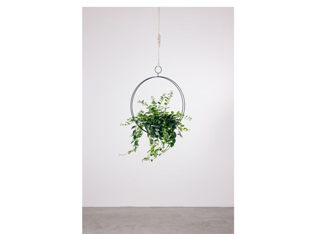 Guirlanda Circular-Suporte para plantas