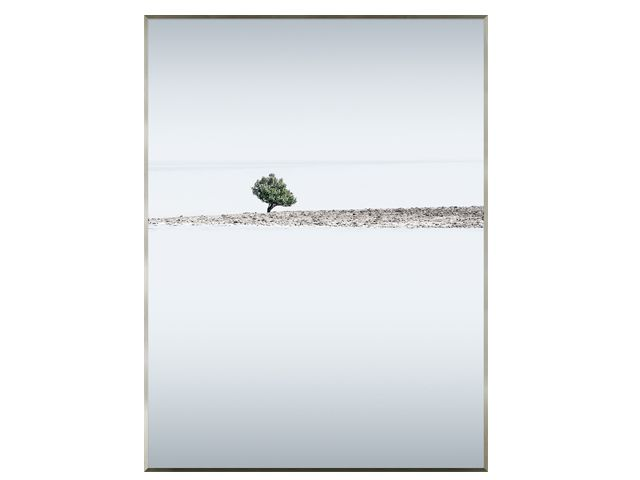 Quadro Double Tree 76x101cm