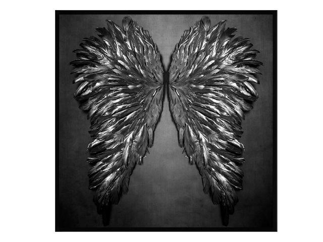 Quadro Wings 123x123cm