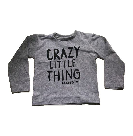 Camiseta Manga Longa Crazy Little - Cinza
