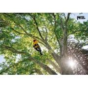 Curso Arboricultura - 15/06/21 a 17/06/21