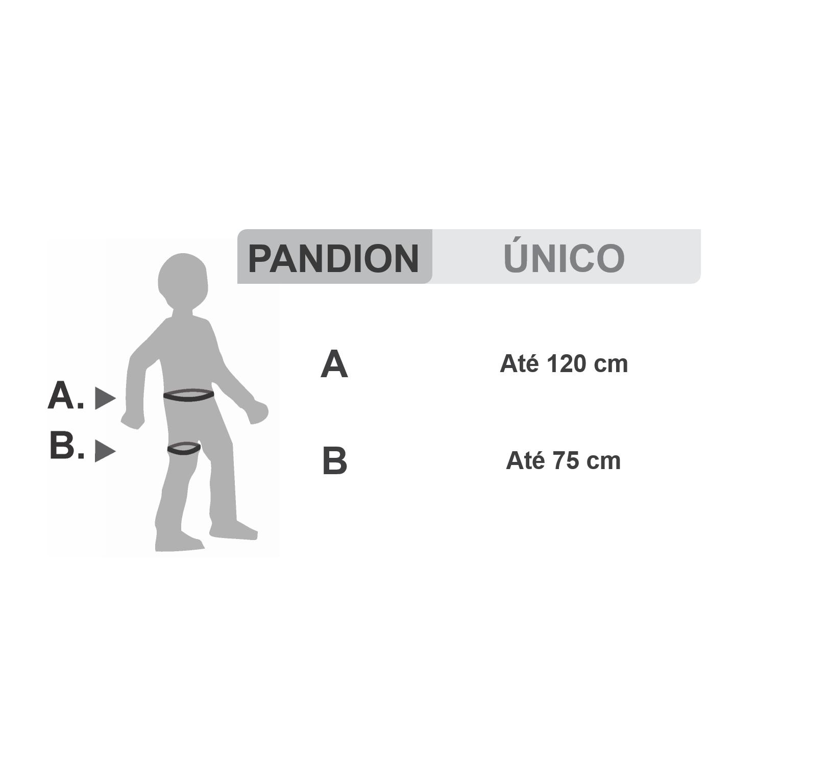 Pandion - Cadeirinha leve para escalada Tamanho Único Petzl