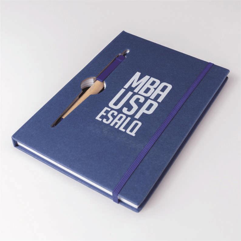 bloco de anotações MBA USP/Esalq (azul)