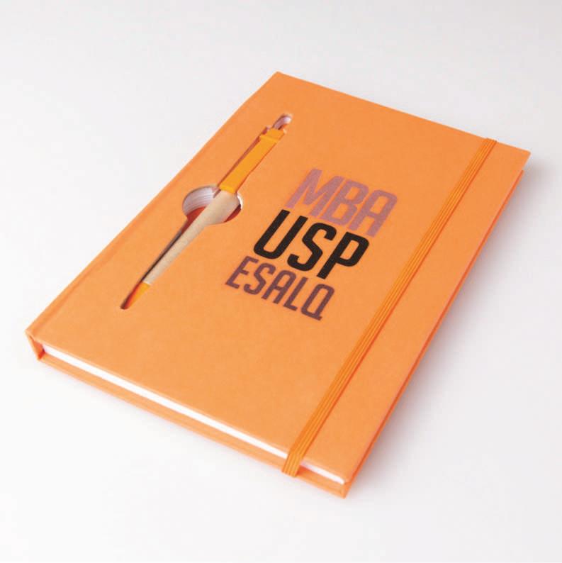 bloco de anotações MBA USP/Esalq (Laranja)