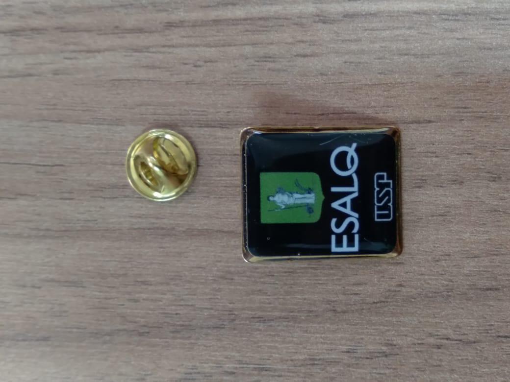 Pin Esalq USP Dourado (Logo Novo)