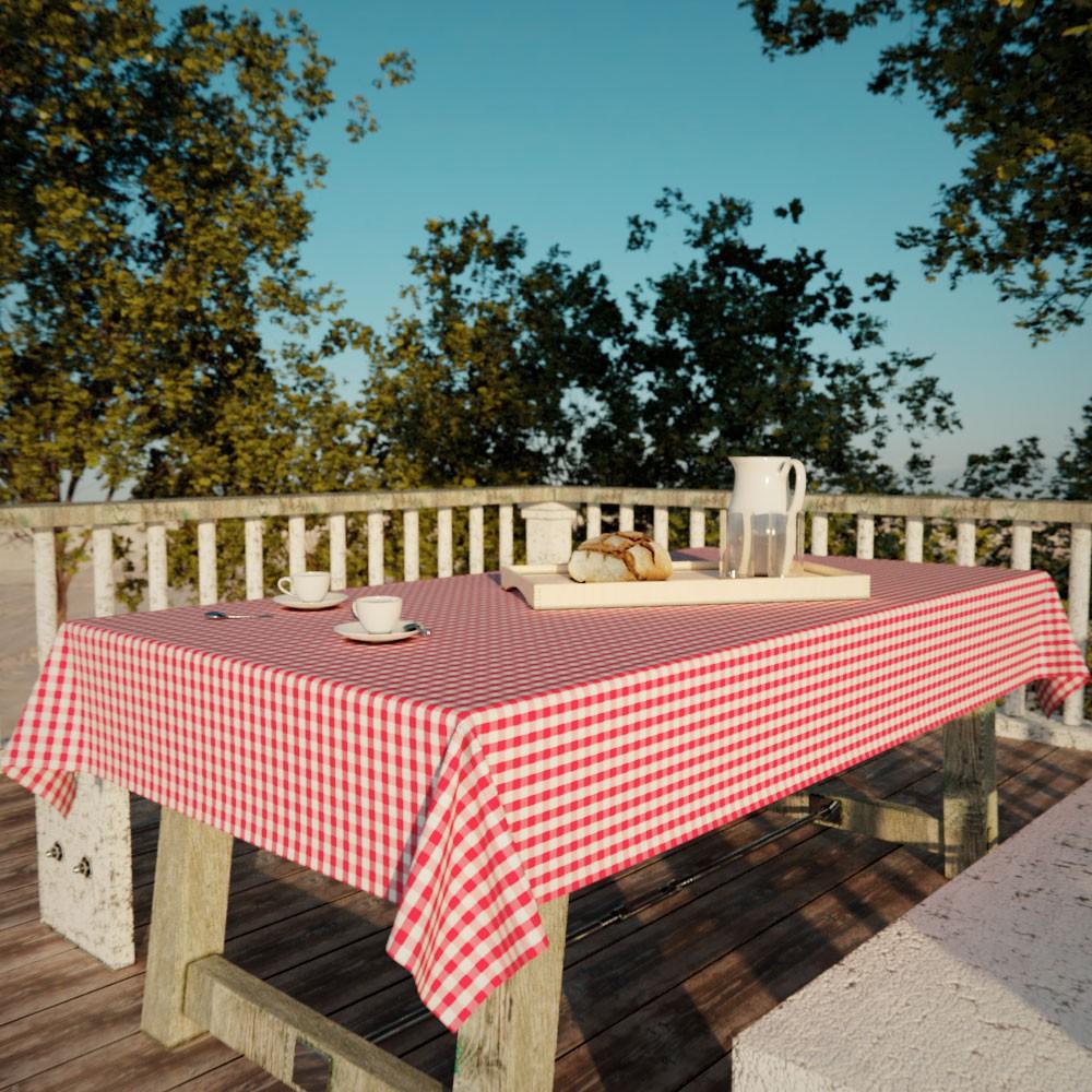 Toalha de Mesa Quadriculada Vermelha e Branca Retangular 8 Lugares Piquenique