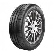 Pneu Goodyear Aro 16 Efficient Grip 215/55 93V