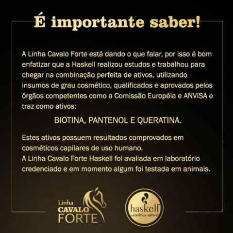Kit Cavalo Forte Haskell