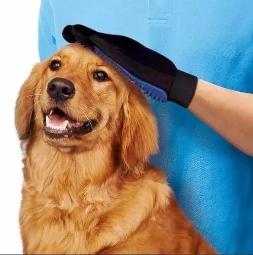 Luva Magnética Removedora De Pelos Para Cães e Gatos