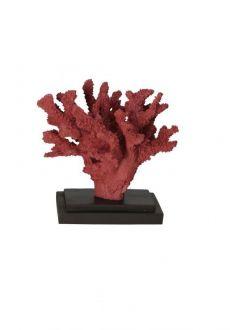 Coral Decorativo em Resina Vermelho 16x17,5x16cm