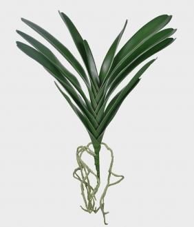 Folha de Orquídea Artificial com Raiz Verde 55cm