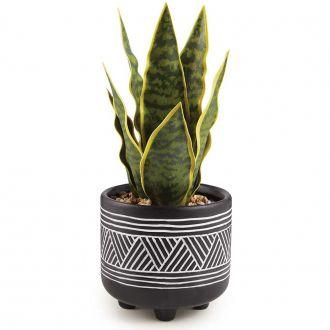 Planta Artificial Espada de São Jorge com Vaso de Cerâmica 26cm