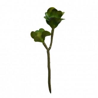 Suculenta Artificial X2 Verde 28cm