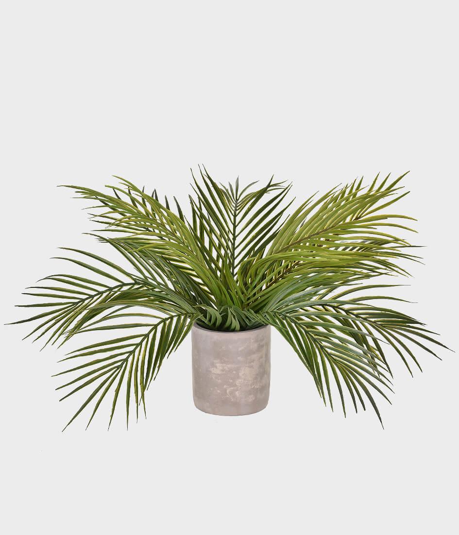 Planta Artificial Mini Palmeira Real Toque com Vaso